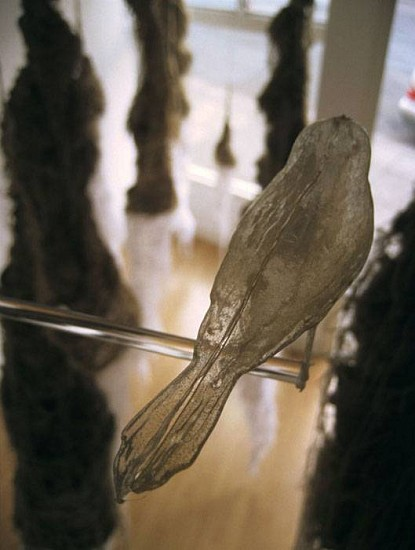 Sarah Wagner, Roots Grow Both Ways 2007, burlap, silk organza, thread, ink paper, PET