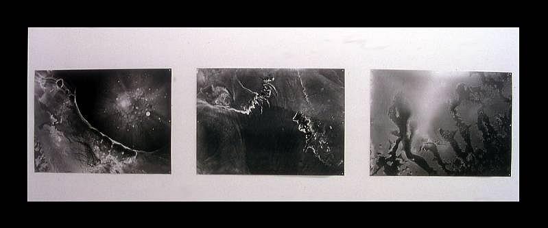Renee van der Stelt, Untitled 2005, lambda