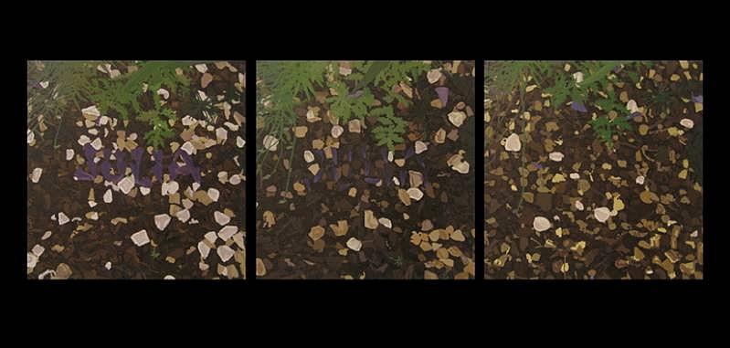 Thom Sawyer, Russian Sage 2008, oil on three cavases