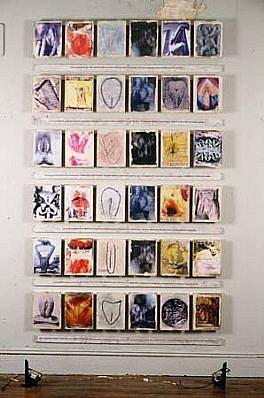 Carolee Schneemann, Vulva's Morphia 1995, 36 framed images on slats with text, floor fans