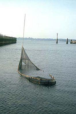 Arden Scott, Intertidal 1997, welded steel, steel mesh