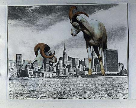 Anita Steckel, Giant Mt. Goats on NY early 80's, montage