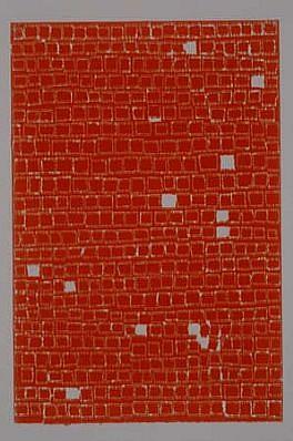 Allyson Strafella, Untitled