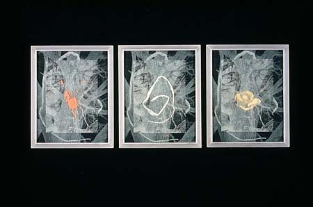 Meridel Rubenstein, Joan's Arc 1996, silkscreen, sandblast