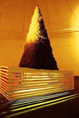 Caoimhghin O Fraithile, Fasac, Desert 2002, hay, wood, wicker, rags