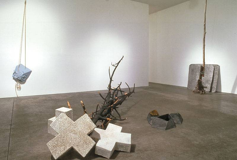 "Chuck Moffit, Installation View of ""Your Becoming Inclusions"" 2008"