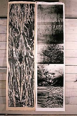 Kathryn Luchs, Woods I 1996, woodcut, graphic film