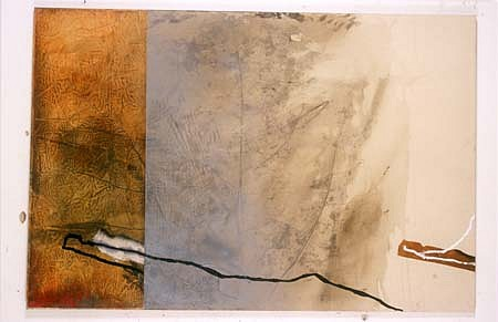 "Piotr Korzeniowski, Conversation about ""Shaping - the Whole Complexity Maps I 2000, photographic emulsion, acryl, printing ink on canvas"