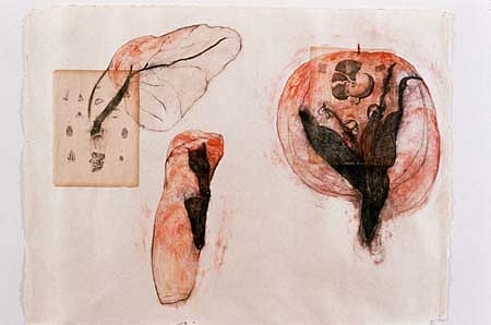 Shelagh Keeley, Gestures of the Site 1998, transfer, collage, wax, pigment, gouache, crayon and pencil on paper