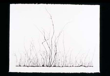 Mahmoud Hamadani, Untitled 2000, ink on paper