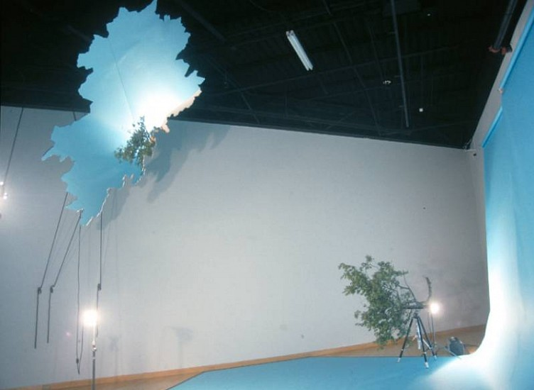 Cameron Gainer, IN/OUT 2008, smoke machine, mirror, paper, tree limb, photo lights, nylon