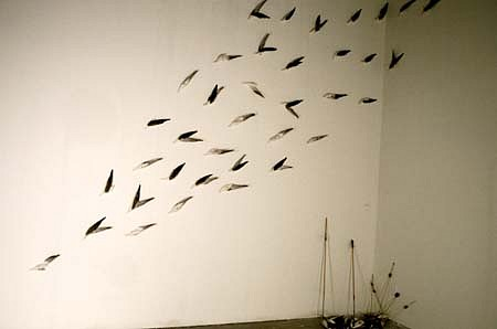 Sheila Ghidini, Birds that Can't Fly 1995