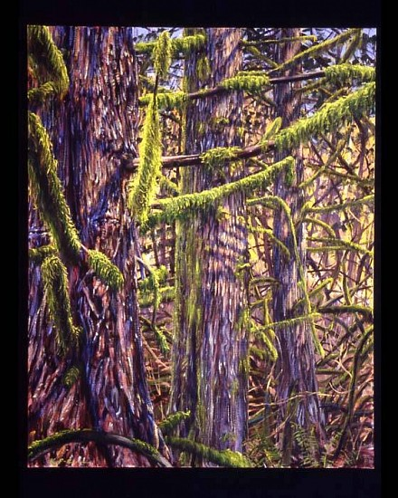 Kathleen Fruge Brown, Cedars, February 2006, oil on canvas