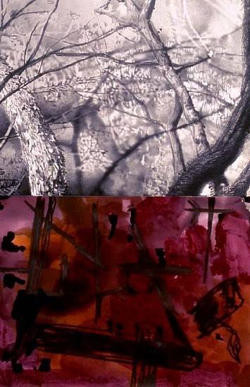Sandra De Sando, Branch Branch 2005, pencil, graphite, ink