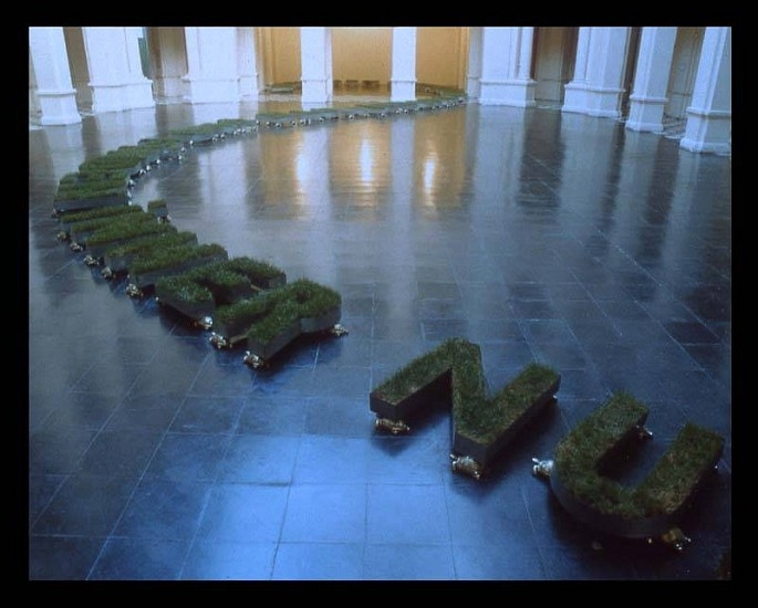 Gonzalo Diaz, Tratado del Entendimiento Humano 2001, metal letters, grass and bronze tortoises