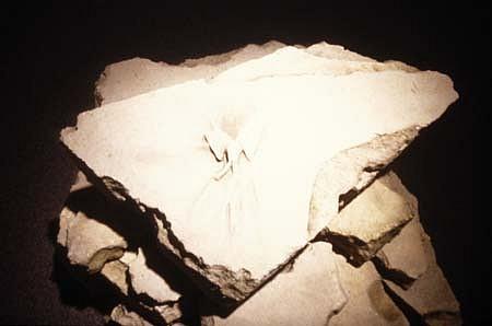 Steven Dolbin, Relic of Memory 2003, sand, resin, acrylic stain