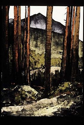 Robert Connell, Mt. Washington in the Olympic National Forest 2004, sumi ink and gouache on paper
