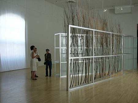 Linda Covit, Willow / Light 2004