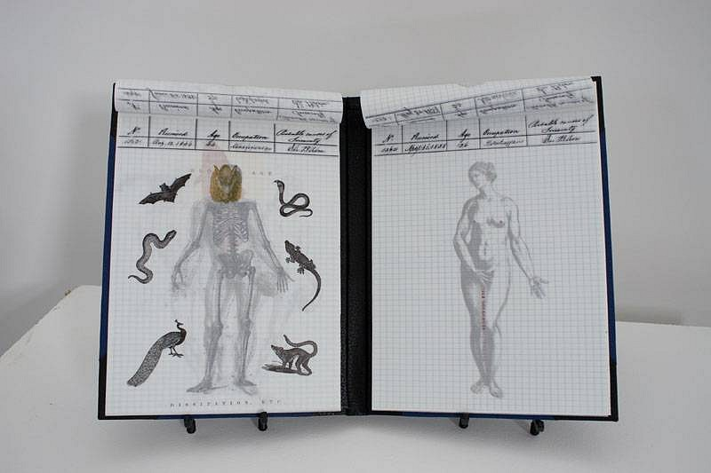 Maureen Cummins, Anatomy of Insanity 2007, ink on tracing paper, bound in paper and leather