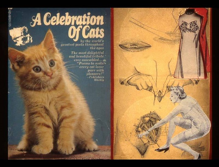Ellie Brown, A Celebration of Cats 2004, mixed media, altered books