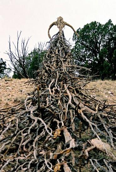 Kathy Bruce, Earth Maiden 2007, bamboo, raffia, recycled wood, grass, live shrub