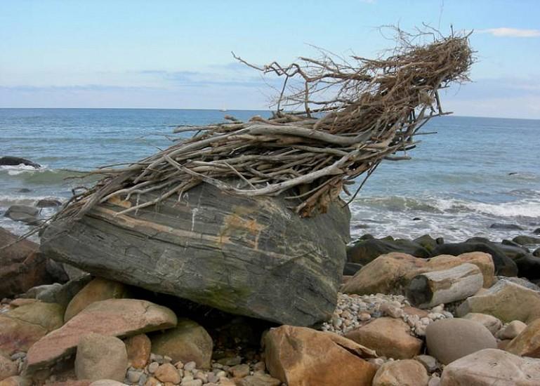 Kathy Bruce, Homage to Neruda 2008, scavenged recycled driftwood on rock base