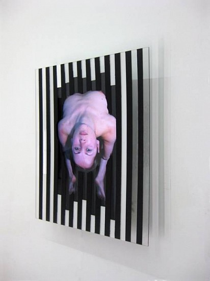 Sean Branagan, Chicken 2010, acrylic paint, perspex, LCD screen (moving image)