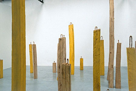 Benedikt Birckenbach, Forrest 2002, maplewood, color