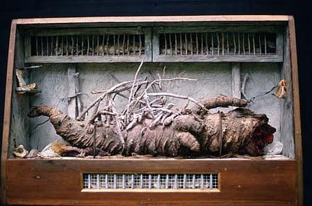 Joyce Blunk, Local News 1989, masonite, paint, paper, metal, palm tree parts, bones, wood