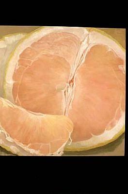 Illia Barger, Grapefruit 5 1998, oil on linen