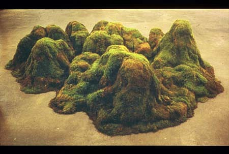 Jane Benson, Mt. Houston - Downtown 2002, moss and mixed media