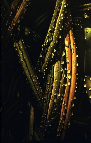 Juan Bernal, Dew 2003, oil on canvas