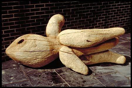 Anne Alexander, Calamar 1989, ash