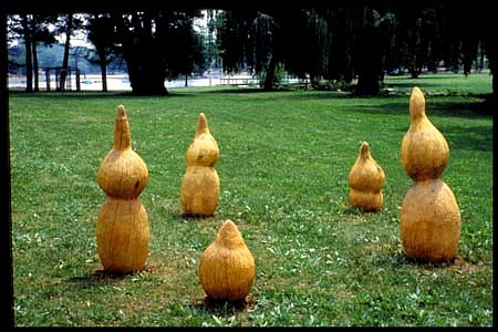 Anne Alexander, Sprouting Bulbs 1994, maple