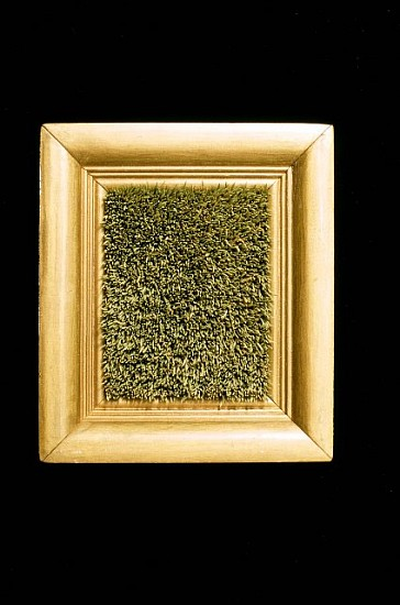 Kyoung Ae Cho, Pine Needles 1994, an old frame, pine needles
