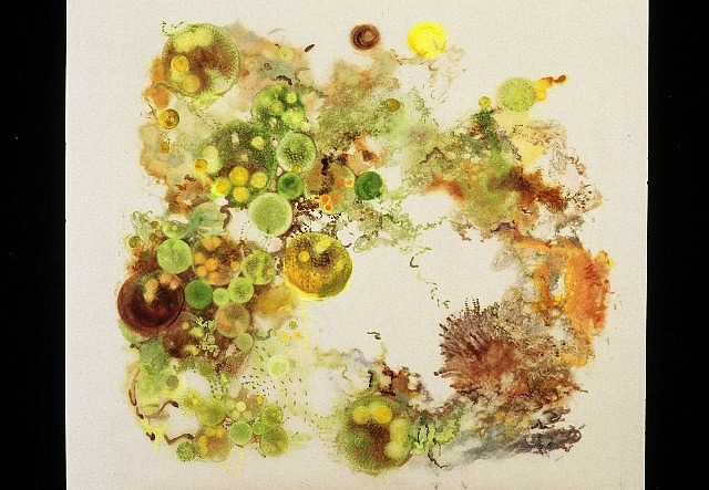Jane Catlin, Coalesce 2005, mixed media on mylar