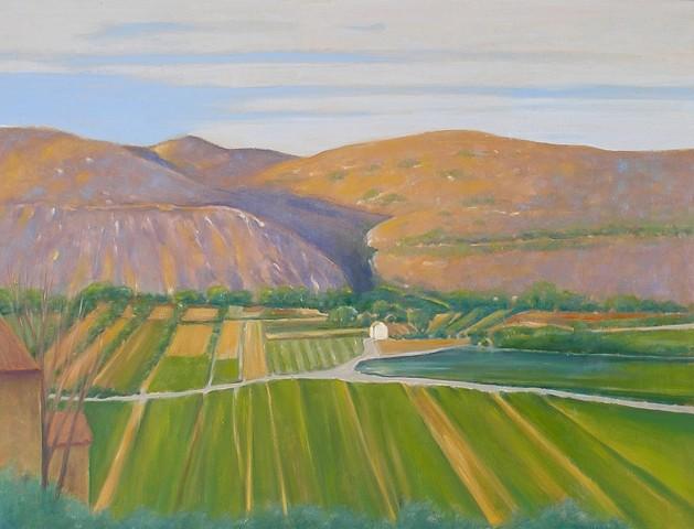 Ray Ciarrocchi, Valley 2008 - 2009, oil on linen