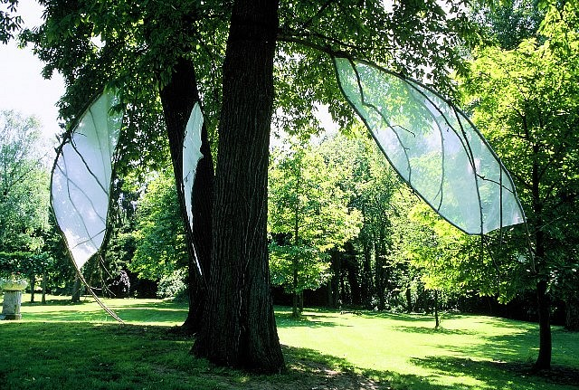 Shigeko Hirakawa, Winged Trees 2006, mixed media, tree branches, technical fabric