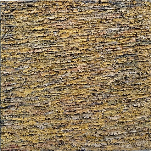 Joanne Kent, Plain of Birds 2002, oil on canvas