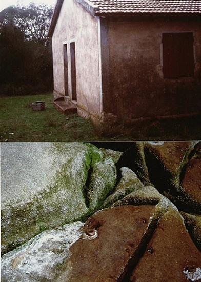 Graziella Reggio, House 2001, original print