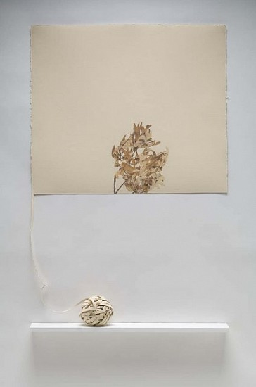 Beverly Ress, Leaves, Wound 2007, colored pencil on paper, mounted on gessoed canvas, cut and wound, wood shelf