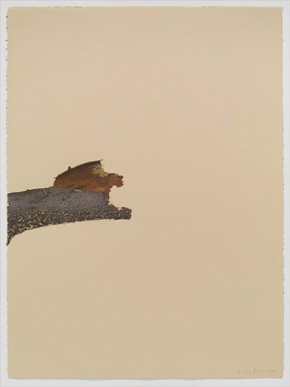 Beverly Ress, Bark 2008, colored pencil on paper