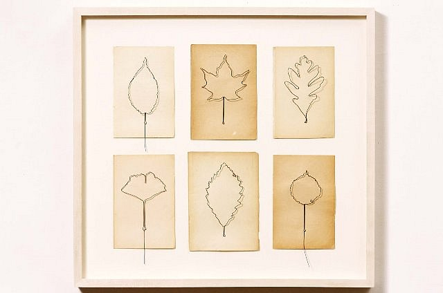 Eric Rhein, Fly Leaves - Gathering of Six No. 3 2003, wire, paper