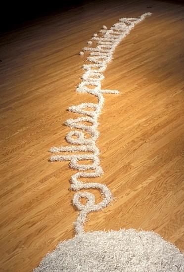 John Salvest, Paper Train 2003, shredded Enron letterhead