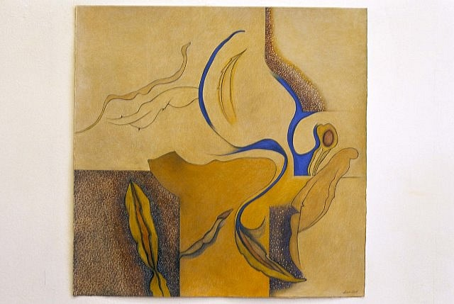 Olga Seem, Anomaly Series, 8 2004, acrylic, pastel, charcoal on paper