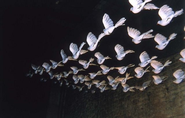 Dolly Unithan, Doves 1 1999, life-like three dimensional synthetic doves