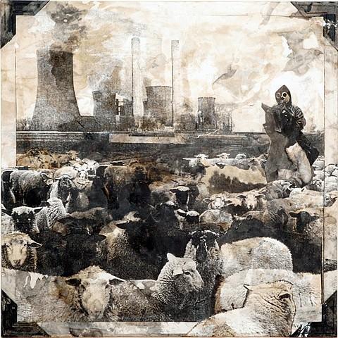 Daniel Pittman, Sheep (American Album Series) 2010, Collage - paper, paint, coffee
