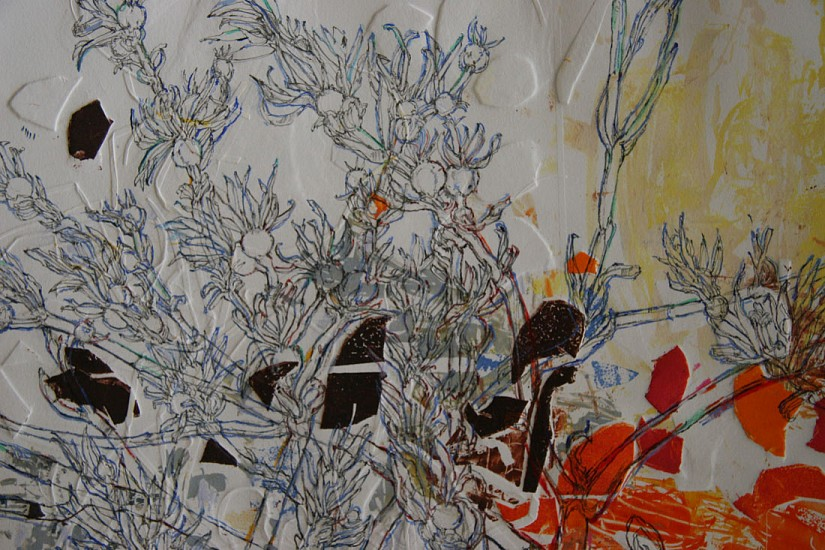 Jacqueline Will, Cuttings #8 2012, drawing on monotype
