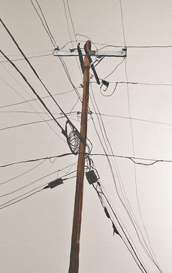 Laura Spalding Best, Every Telephone Pole on Roosevelt Street #2 of 18 2011, oil on metal