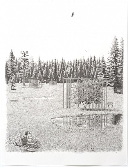Jennifer Celio, NIMBY (The Meadow) 2012, graphite pencil on paper